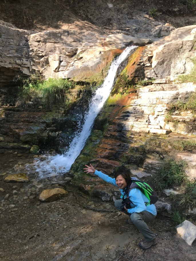 Ely Waterfall