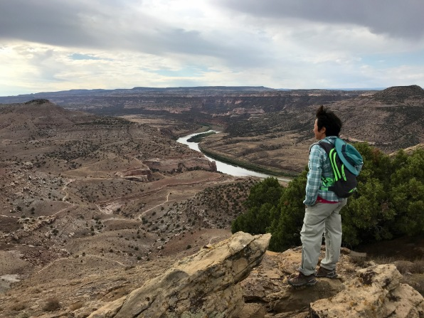 The Colorado River and Steve's Loop Trail below