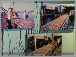 Biloxi was the shrimp capital of the U.S. in the 1920's