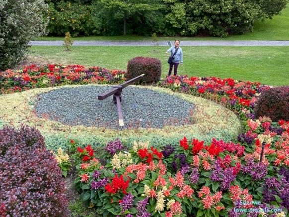 A working flower clock