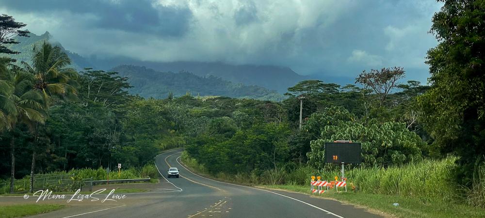 Kuhio Highway 560